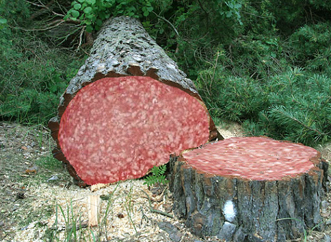 фото колбасное дерево