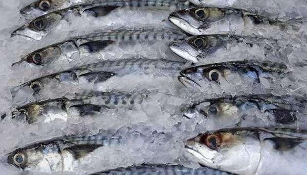 Как выбрать рыбные консервы