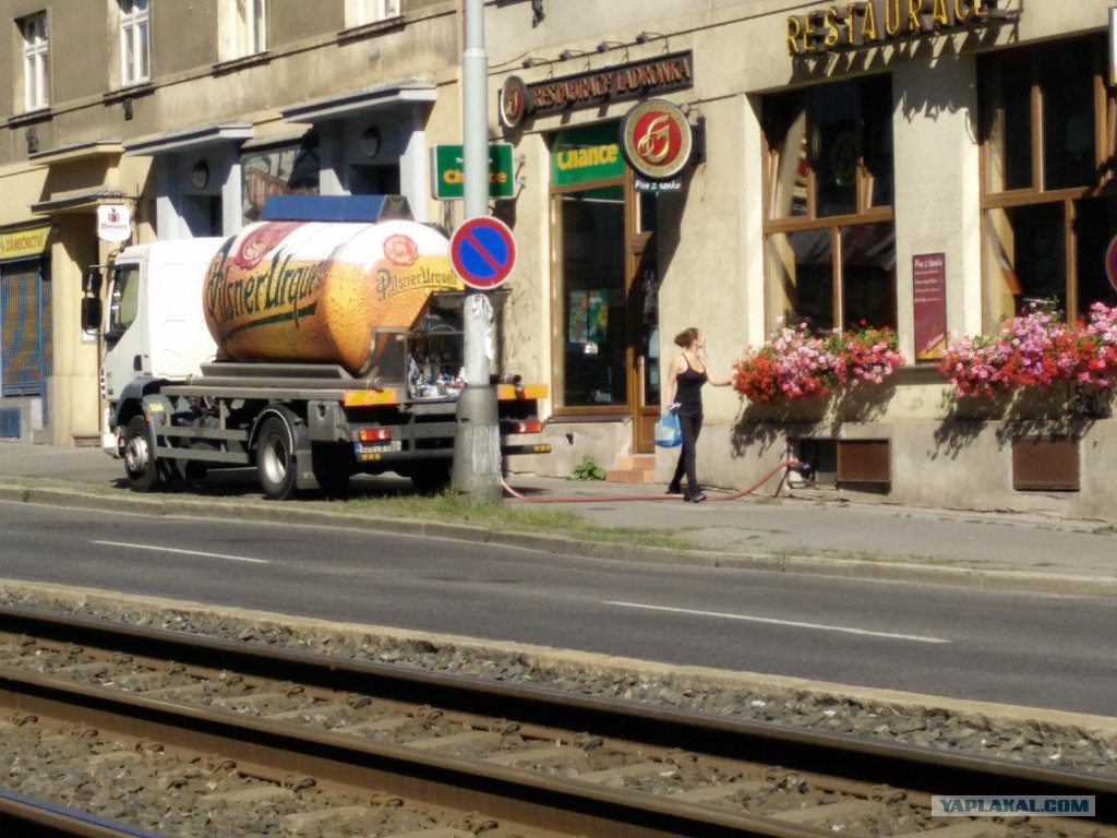 пиво танковое картинки этом выпуске