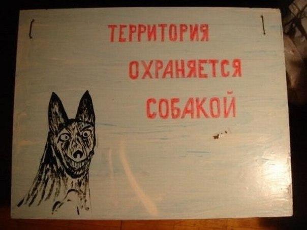 https://s00.yaplakal.com/pics/pics_original/3/8/8/13925883.jpg