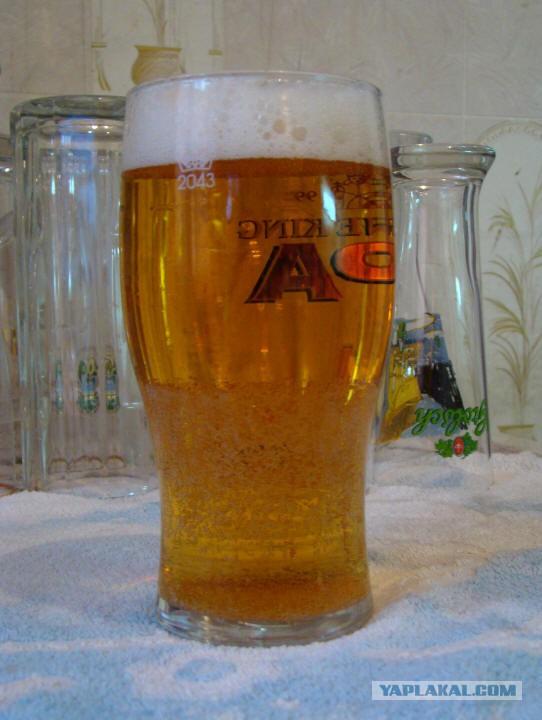 Пивной стакан спермы фото 10-692