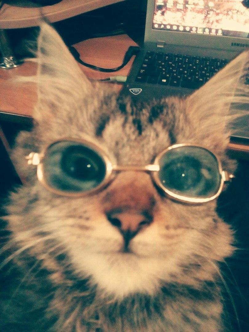 статус про очки