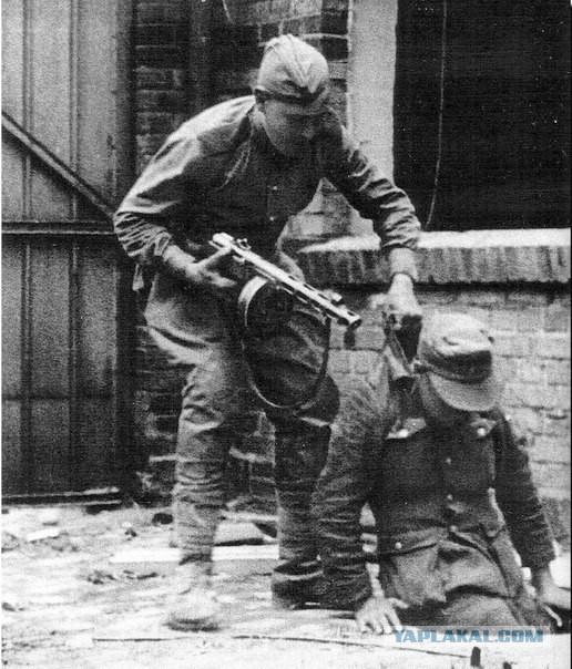 действия термобелья о возвращении русских немцев в функциональное белье отлично