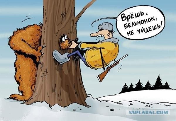Медведь охотника трахнул фото фото 411-258