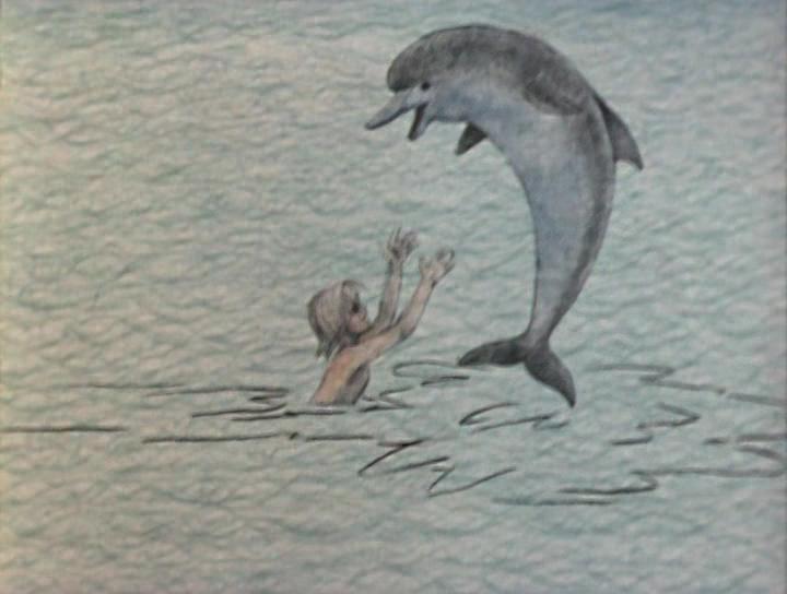 слова песня про дельфина грустная тела