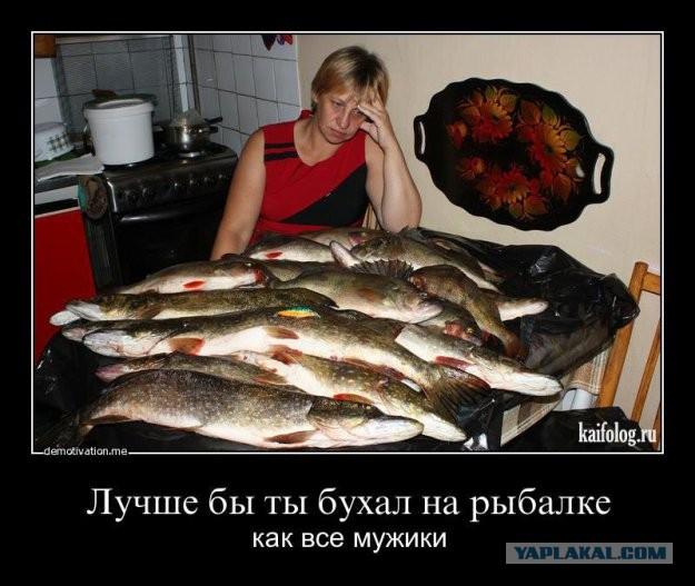 Готовлю жену на блядки