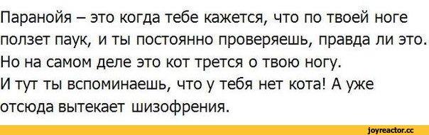 Яндекс контекстная реклама телефона