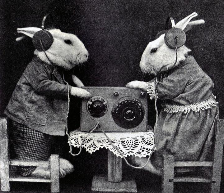 Барабанщиками, веселые картинки про радио