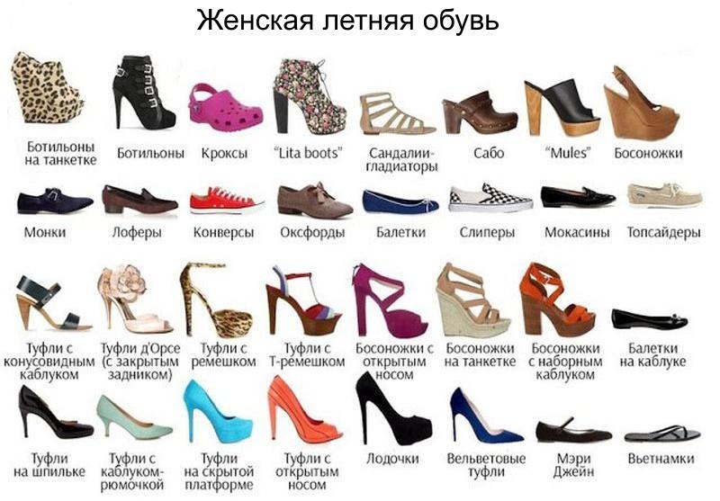 женская обувь разновидности с фото и названиями удобная машина