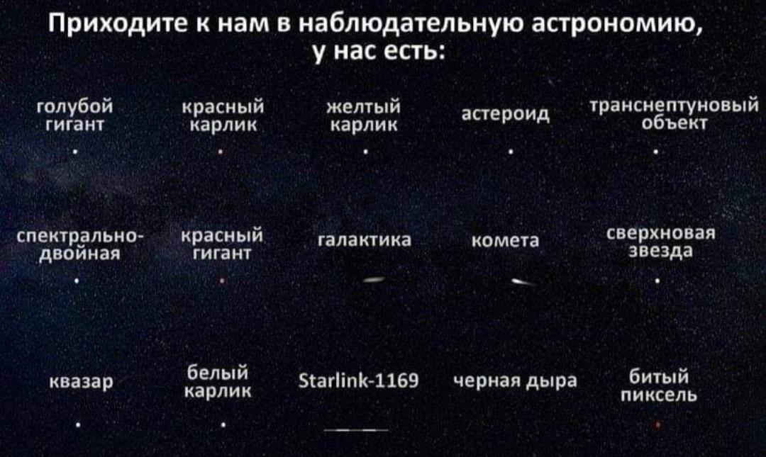 15309434.jpg