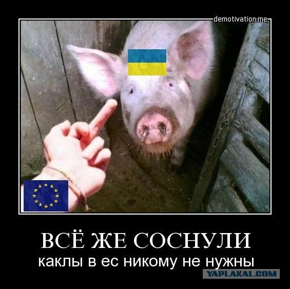 и украинцы селяков шлюх это рагулей нация