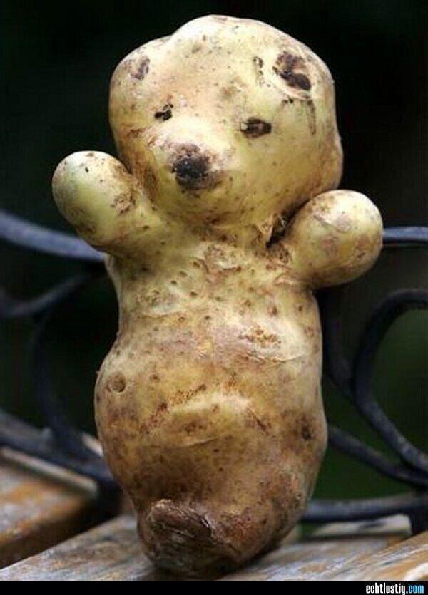 Прикольные картинки картошка, для