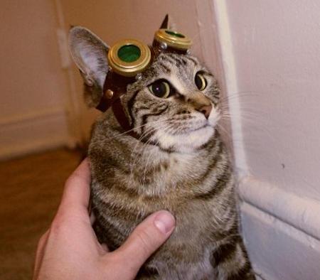 Посвящение котовторнику - лежанка а'ля стимпанк.