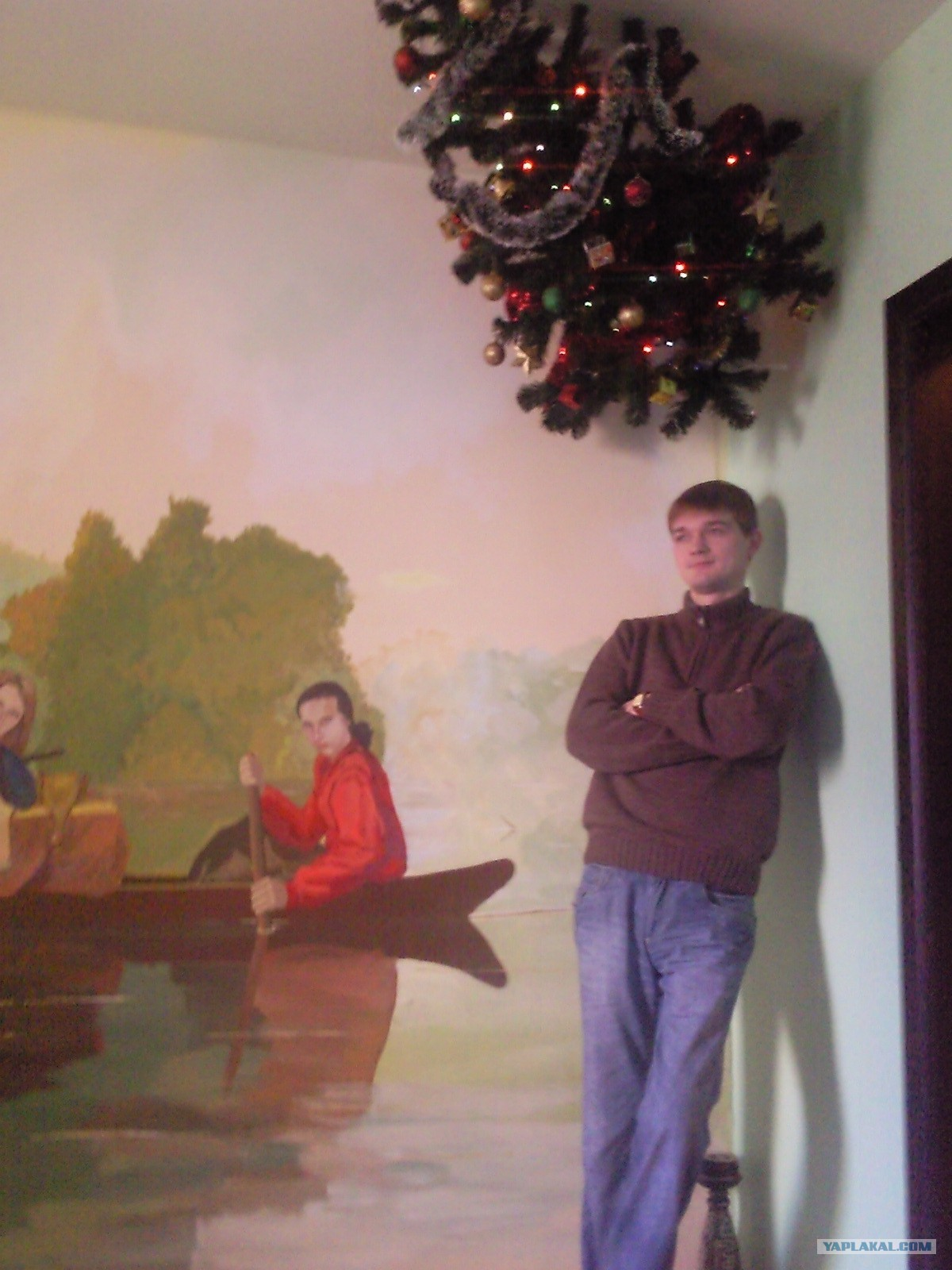 Картинки с котом ронял елку