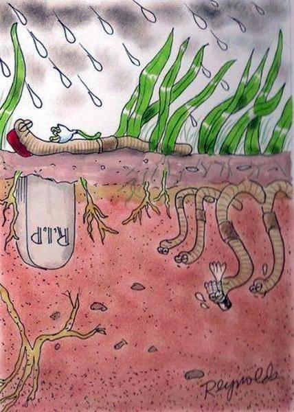 Прикольные картинки про червей, пожелание быстрого выздоровления