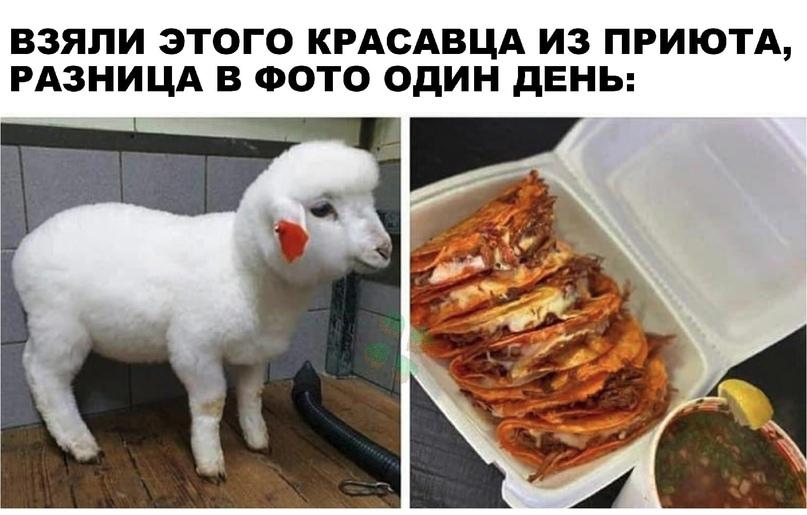 https://s00.yaplakal.com/pics/pics_original/4/5/7/15453754.jpg