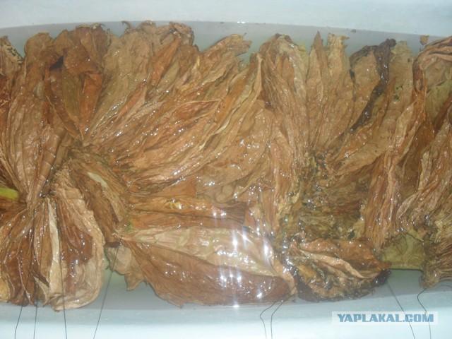 Чем ароматизировать табак в домашних условиях
