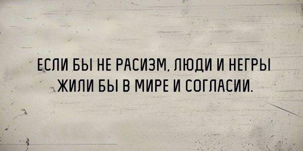14601064.jpg