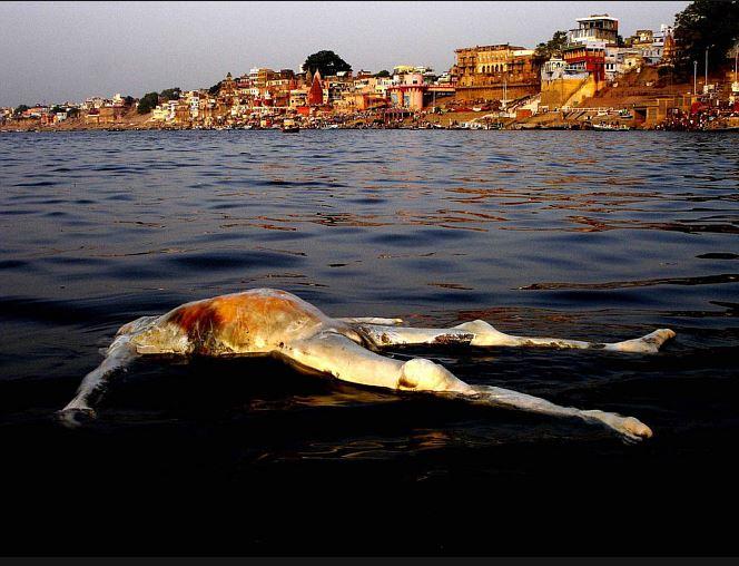 Индус срет в море
