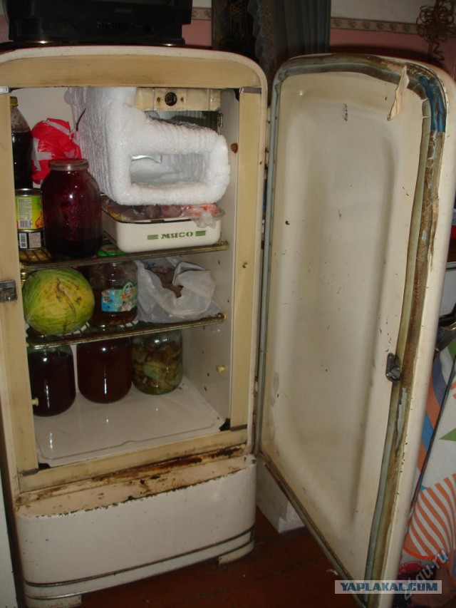 Ебет перед холодильником