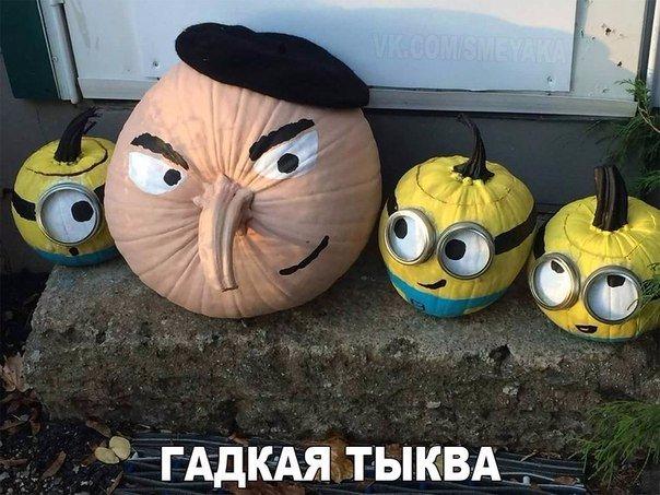 Весёлые картинки 30.11.2016