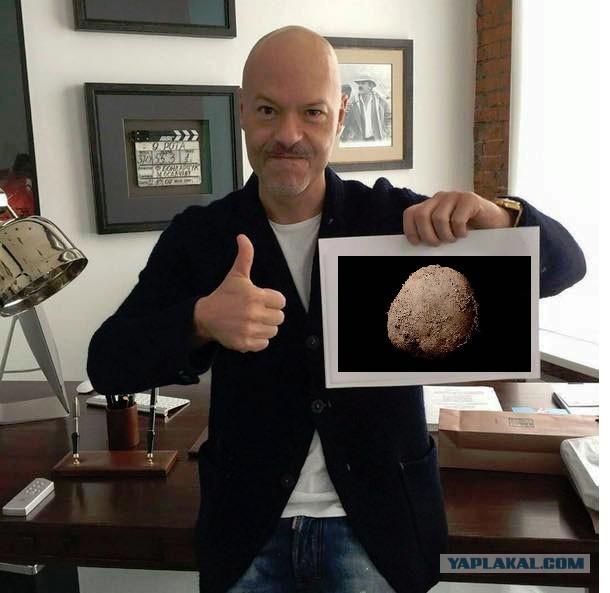 Фото картофеля за миллион долларов