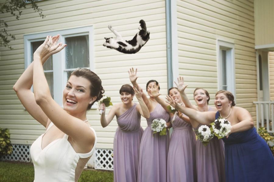 смешные картинки свадьба подруги порывшись