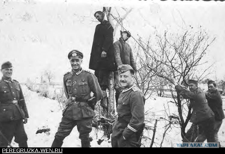 Гитлер трахает анну франк
