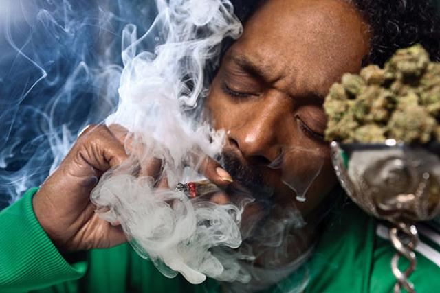 Во сне курить марихуану разрешили марихуану в чехии