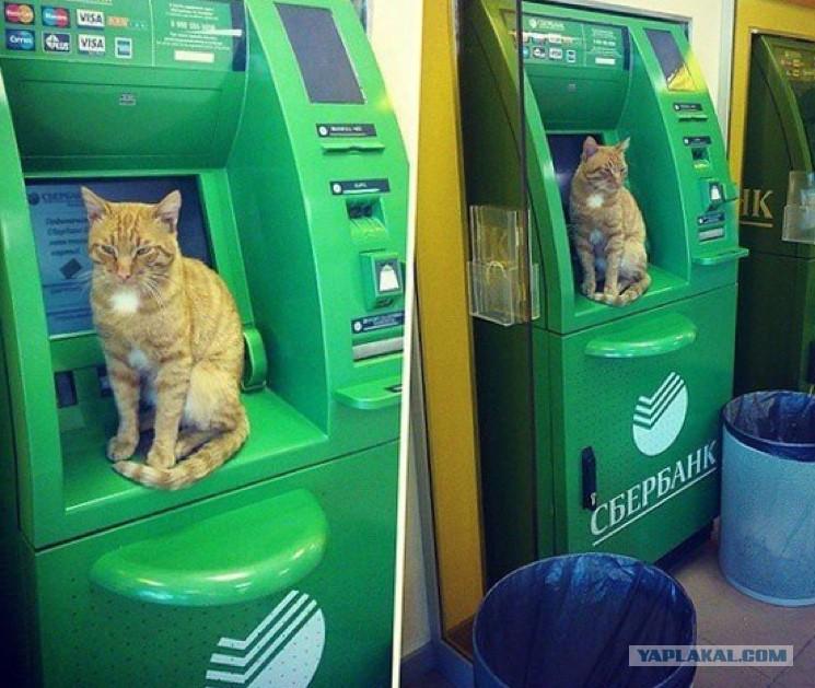Смешные картинки с банкоматом