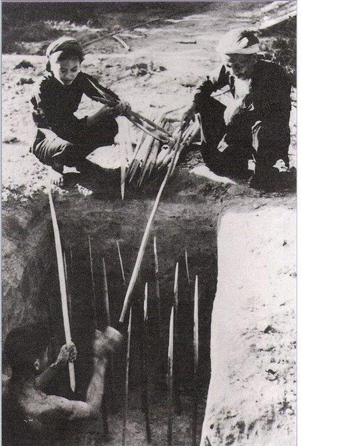 Вьетнамские ловушки для американцев фото