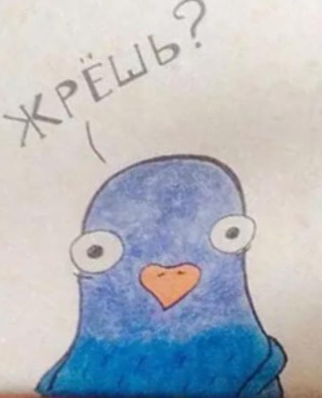 Стихами, смешные картинки с голубем жрешь