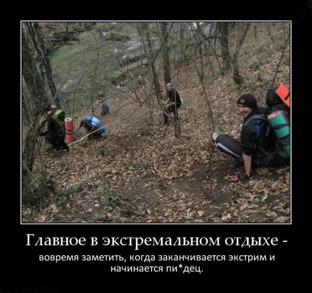 Прикольные картинки про поход в лес