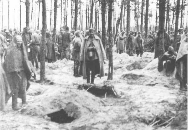 Дневник лагерного охранника. Stalag XD(310) Wietzendorf . 1942
