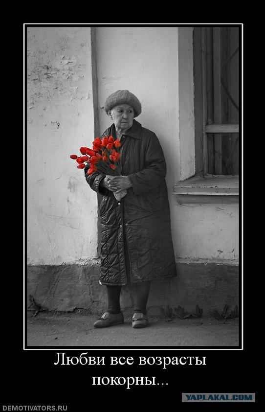 стихи к фото юмору все возрасты покорны получили фотографы, авторские