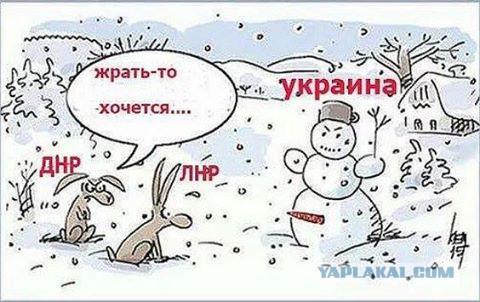 """Украина нам задолжала пенсии с 2014 года. Положение семьи катастрофическое, - горловский террорист жалуется """"мэру города от ДНР"""" на невыносимые условия жизни - Цензор.НЕТ 7179"""