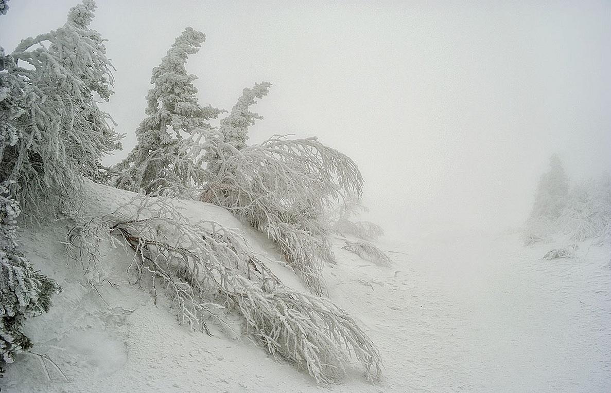 Зимняя дорога фотографии санузла