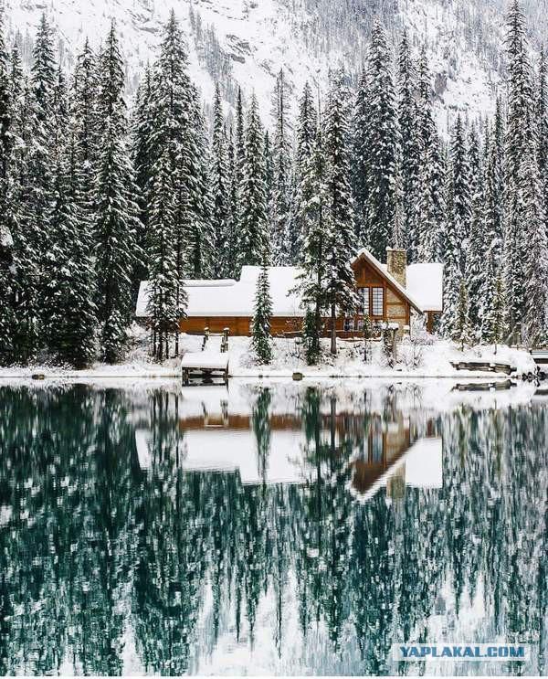 А ты любишь зимнюю рыбалку? Тогда смотри