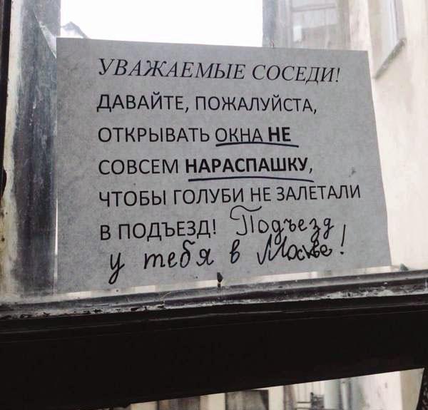 """Почему в Петербурге говорят """"парадная""""?"""
