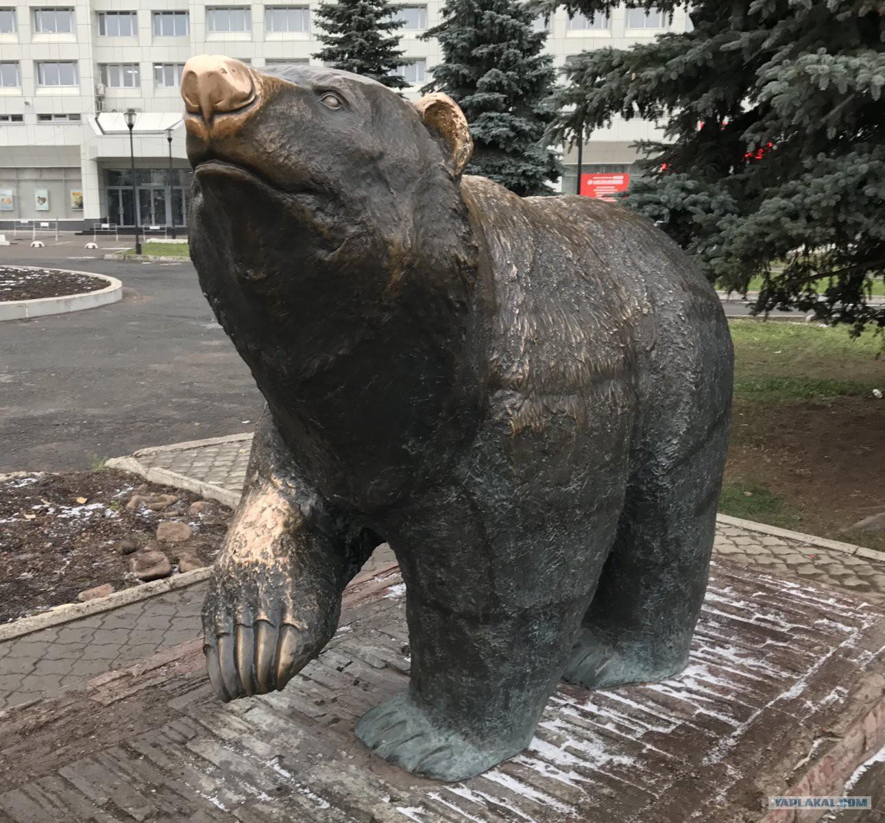 Медведь пермь картинки