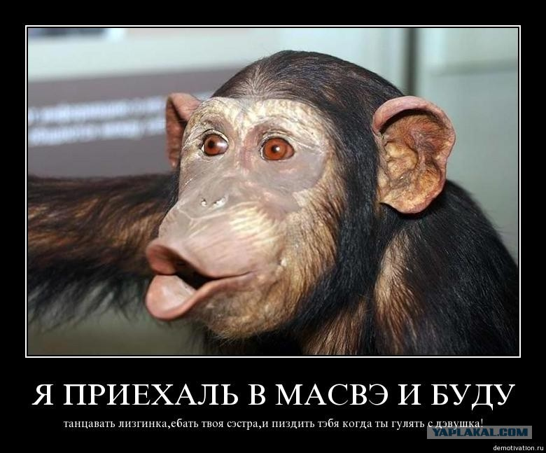 Девочку трахает обезьяна