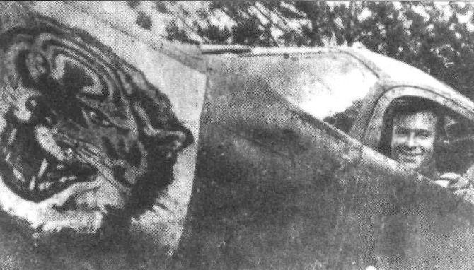 рисунки эмблемы на самолетах советских асов вов яплакалъ