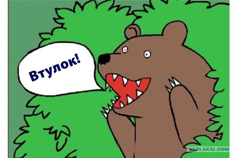 Медведь иди на хуй