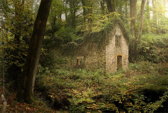 Удивительные фотографии домов, затерянных в лесах - ЯПлакалъ