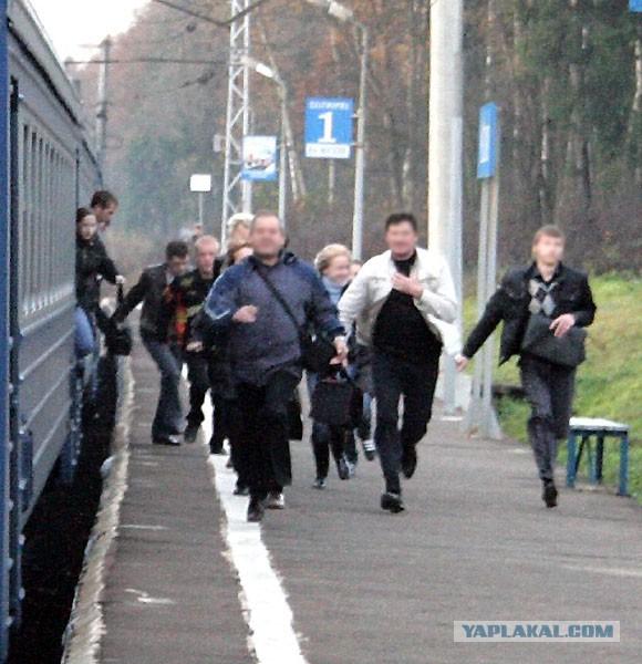 Любители бесплатного проезда