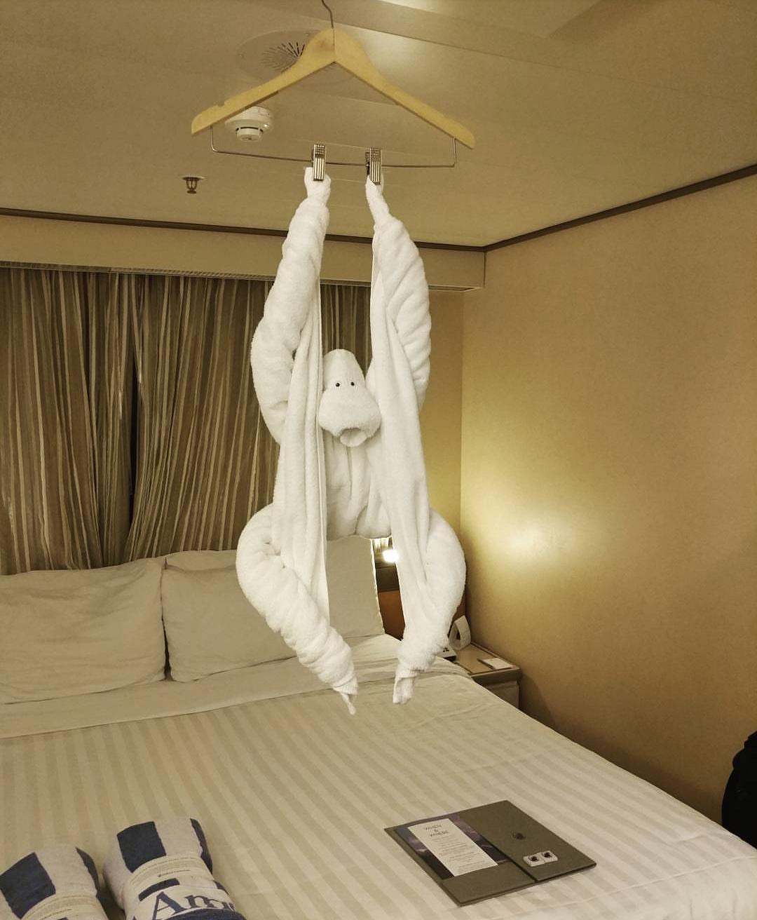 Открыток, смешные картинки про отели