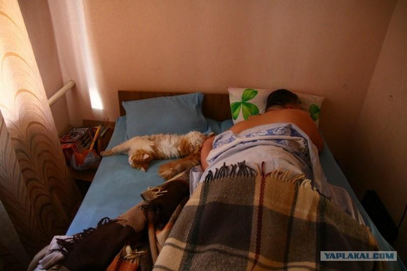 Жена уснула пьяная фото 665-322