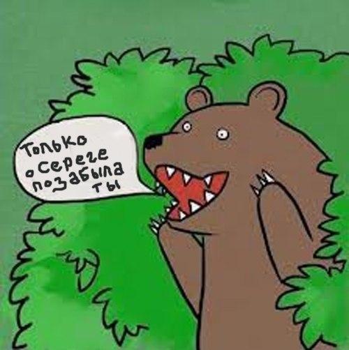 шлюха медведь картинки орет