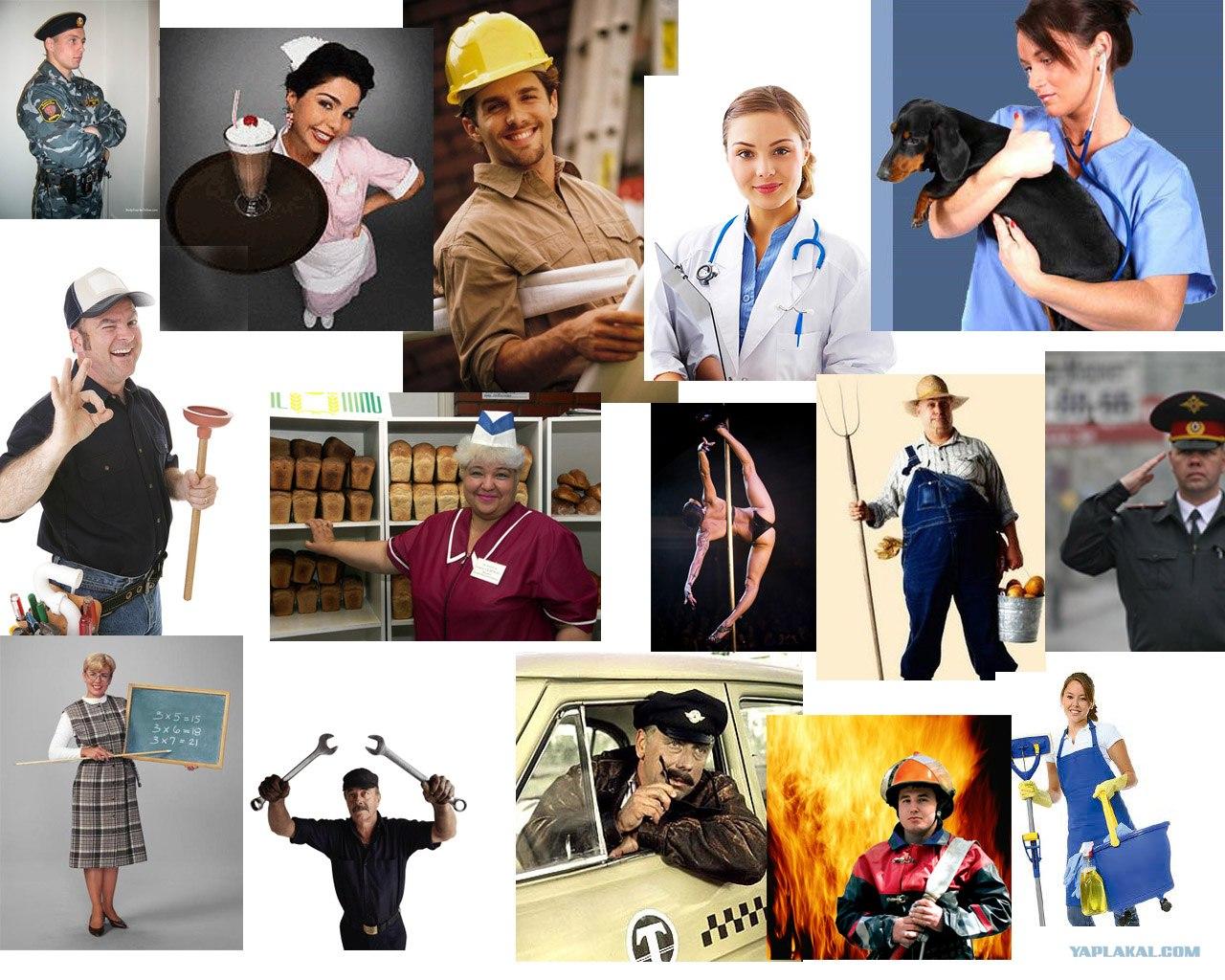 Любимые профессии картинки