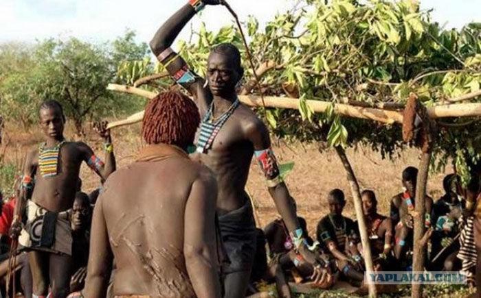 Сексуальные ритуалы племен видео